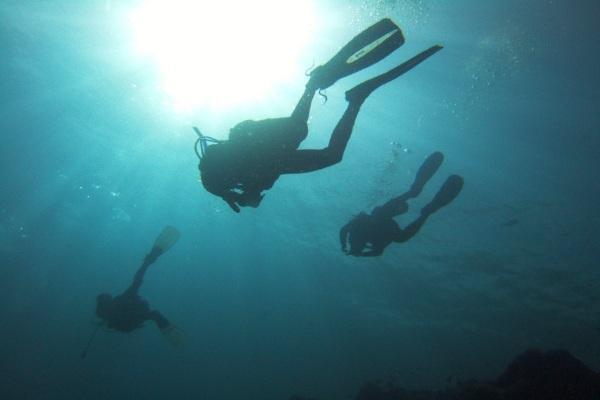 Andaman Bubbles Dive Centre : Discover Scuba Diving (upto 60 minutes)  package per person